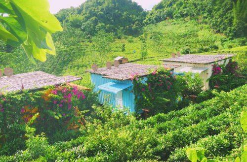Khám phá khu nghỉ dưỡng kiểu mới – Mộc Châu Arena Village