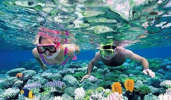 Những điều lưu ý khi tiếp cận tour lặn ngắm san hô Nha Trang